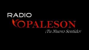 Radio VOPALESON
