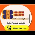 Buddu FM - 98.8 FM