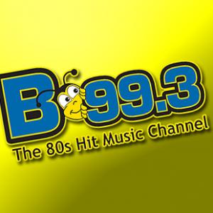 WSNN- B- 99.3 FM