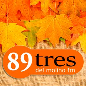 Del Molino FM - 89.3 FM