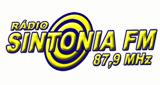 Rádio Sintonia 87.5
