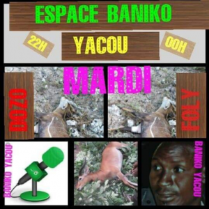 Radio Espace Baniko Yacou