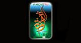 Radio Ummah FM